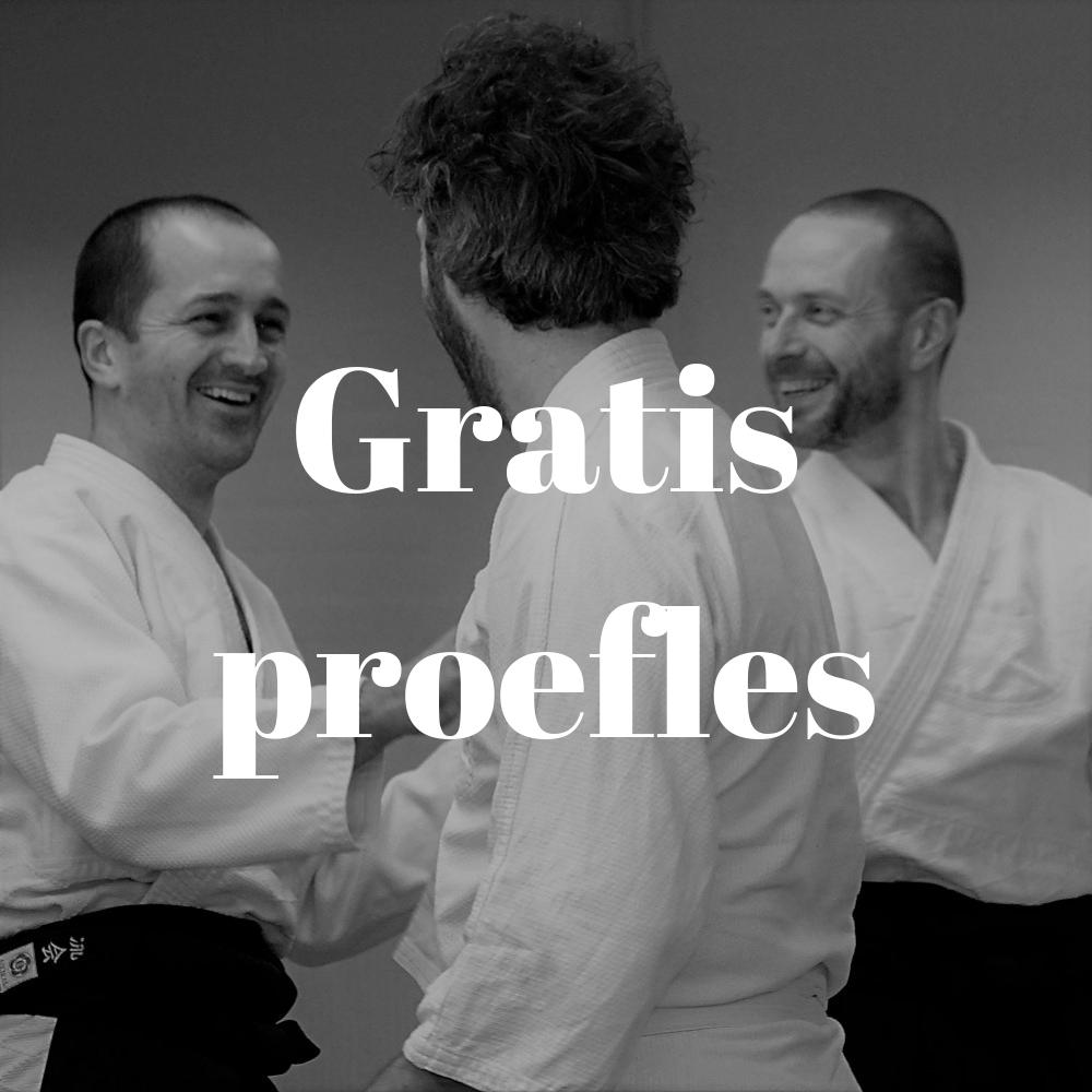 Gratis proefles Aikido